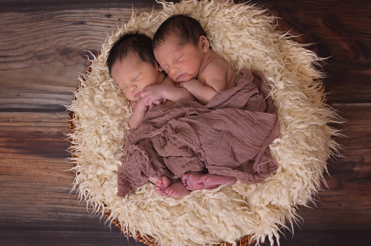 twins, boys, babies